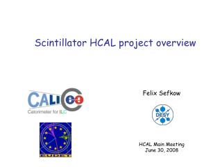 Scintillator HCAL project overview
