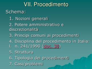 VII. Procedimento