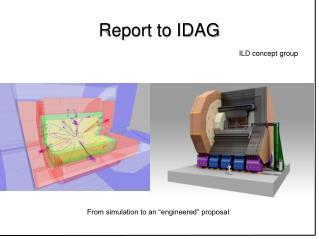 Report to IDAG