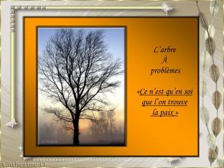 L'arbre  À  problèmes  « Ce n'est qu'en soi  que l'on trouve  la paix »