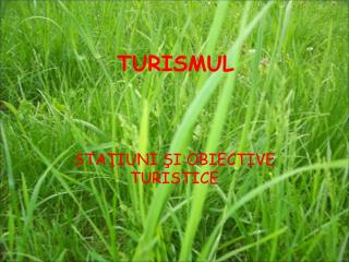 TURISMUL