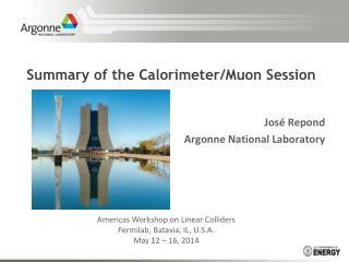 Summary of the Calorimeter/Muon Session