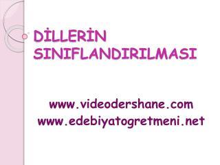 DILLERIN SINIFLANDIRILMASI