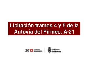 Licitación tramos 4 y 5 de la Autovía del Pirineo, A-21