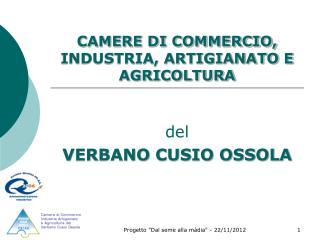 CAMERE DI COMMERCIO, INDUSTRIA, ARTIGIANATO E AGRICOLTURA
