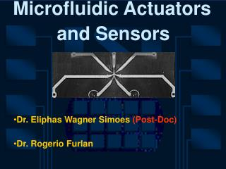 Microfluidic Actuators