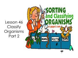 Lesson 46 Classify Organisms  Part 2