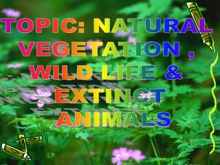 TOPIC: NATURAL  VEGETATION ,  WILD LIFE &  EXTINCT  ANIMALS