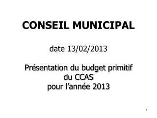 CONSEIL MUNICIPAL  date 13/02/2013 Présentation du budget primitif du CCAS  pour l'année 2013