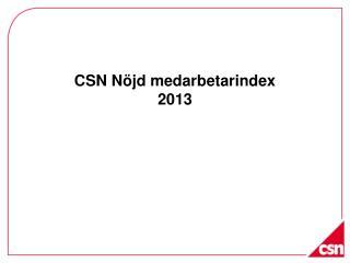 CSN Nöjd medarbetarindex 2013