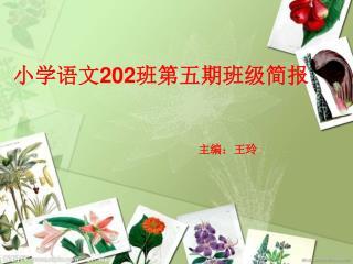 小学语文 202 班第五期班级简报