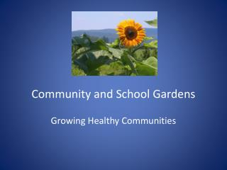 Community and School Gardens