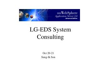 LG-EDS System Consulting