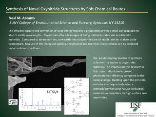 Synthesis of Novel Oxynitride Structures by Soft Chemical  Routes