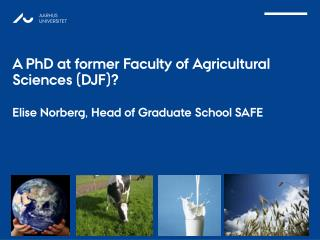 PhD EDUCATION AT DJF