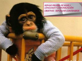 REPASO PRUEBA DE NIVEL I LENGUAJE Y COMUNICACIÓN OBJETIVO:  REFORZAR CONTENIDOS .