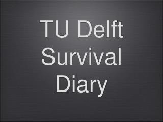 TU Delft Survival Diary
