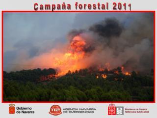 Campaña forestal 2011