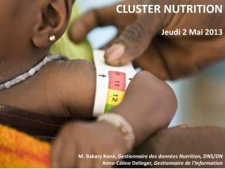 CLUSTER NUTRITION Jeudi 2 Mai 2013 M. Bakary Koné,  Gestionnaire des données Nutrition, DNS/DN