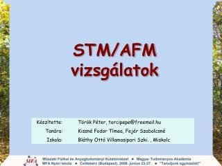 STM/AFM  vizsgálatok
