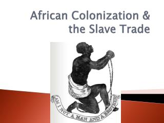 African Colonization  the Slave Trade