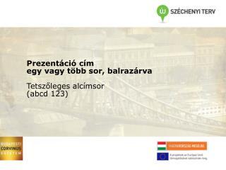 Budapesti Corvinus Egyetem Prezentáció cím egy vagy két sor, balrazárva