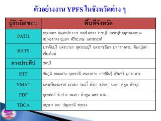ตัวอย่างงาน  YPFS  ในจังหวัดต่าง ๆ