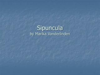 Sipuncula by Marika Vanderlinden