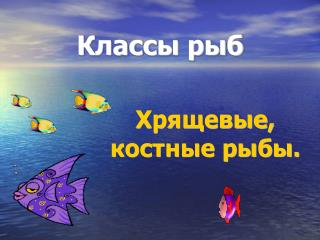 Классы рыб