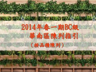 2 014 年春一期 BC 級    華南區陳列指引 (按品種陳列)