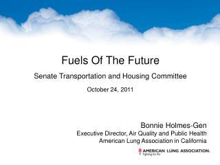 Bonnie Holmes-Gen Executive Director, Air Quality and Public Health