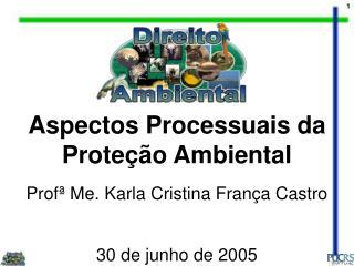 Aspectos Processuais da Prote��o Ambiental