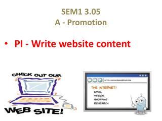 SEM1 3.05 A - Promotion