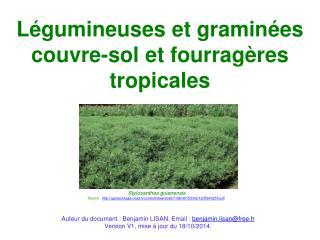 Légumineuses et graminées couvre-sol et fourragères tropicales