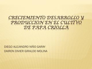 CRECIEMIENTO DESARROLLO Y PRODUCCION EN EL CULTIVO DE PAPA CRIOLLA
