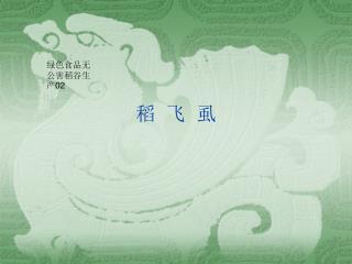 稻  飞  虱
