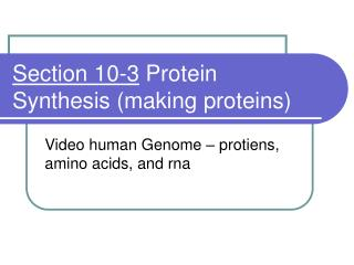 Section 10-3  Protein Synthesis (making proteins)