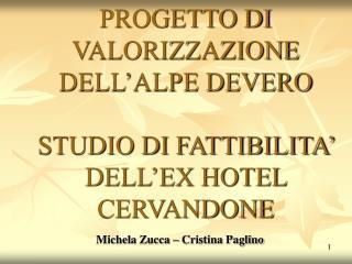 PROGETTO DI VALORIZZAZIONE DELL'ALPE DEVERO STUDIO DI FATTIBILITA' DELL'EX HOTEL CERVANDONE