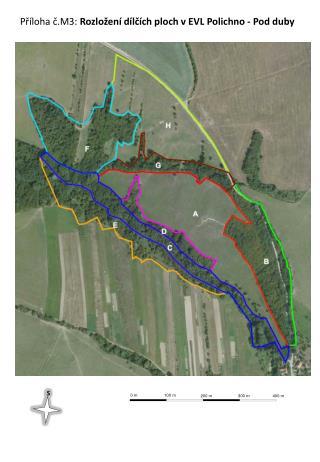 Příloha č.M3:  Rozložení dílčích ploch v EVL Polichno - Pod duby