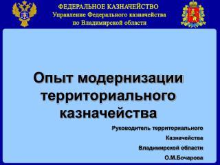 Опыт модернизации территориального казначейства Руководитель территориального  Казначейства