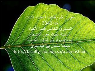 مقرر: علم وظائف أعضاء النبات حيا 3343 المستوى الخامس قسم الأحياء  د.أمينة  عبدالرحمن  المشحن