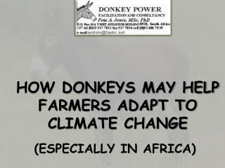 HOW DONKEYS MAY HELP FARMERS ADAPT TO CLIMATE CHANGE