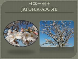 日本ー網干 JAPONIA-ABOSHI