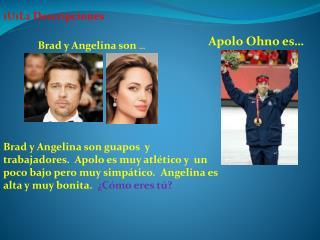 Brad y Angelina son  …