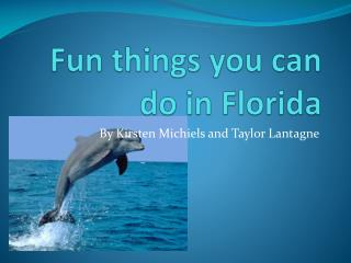 Fun things you can do in Florida