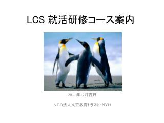 LCS  就活研修コース 案内