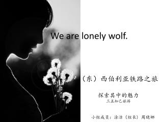 We are lonely wolf.