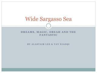 the relationship between rochester and antoinette in wide sargasso sea by jean rhys Wide sargasso sea by jean rhys jean rhys's spell-binding novel wide sargasso sea, inspired by jane eyre and winner the.