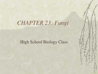 CHAPTER 23: Fungi