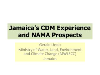 Jamaica's CDM Experience and NAMA Prospects